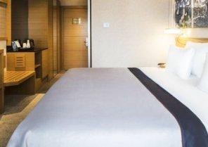Park Dedeman Levent Hotel