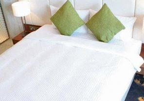 Aerotel Muscat Hotel